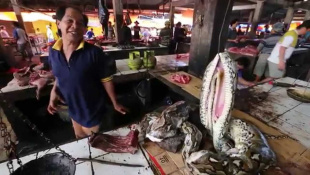 Индонезия. Уникальный репортаж с острова Ява. 15 серия   Мир Наизнанку - 5 сезон