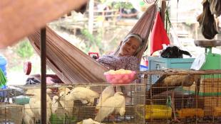 Вьетнам. 13 выпуск (1080p HD)   Мир Наизнанку
