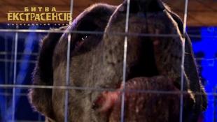 Неизвестное науке существо отгрызает лапы собакам – Битва экстрасенсов-15. Выпуск 3. Часть 1