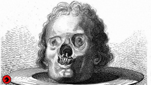 """СИФИЛИС: Происхождение """"самой позорной болезни"""""""