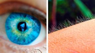 11 простых объяснений странным реакциям тела