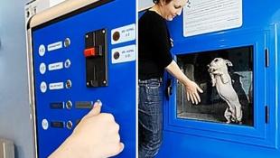 Самые Необычные Торговые Автоматы, Которые Взорвут Ваш Мозг