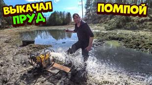 Выкачал пруд помпой! Ловлю рыбу руками. Бобба вытянул бобра с норы.