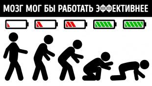 Как изменится мир, если люди перестанут ходить на двух ногах