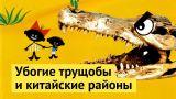Африканские муравейники: реновация в Анголе
