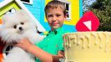 День Рождения канала Mister Max 4 года Funny puppy Gucci Birthday gift for kids party