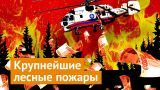 Пожары в Сибири: почему необходимо бить тревогу