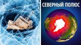 Почему невозможно выжить на Северном полюсе?