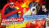 ДАВИДЫЧА ЗАПРЕТИЛИ В САМАРЕ / СОБАКА-ГИПНОТИЗЕР НА ФЕДЕРАЛЬНОМ КАНАЛЕ